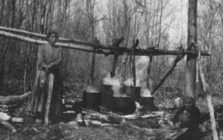A photo of an Ojibwa woman tending kettles of maple syrup.