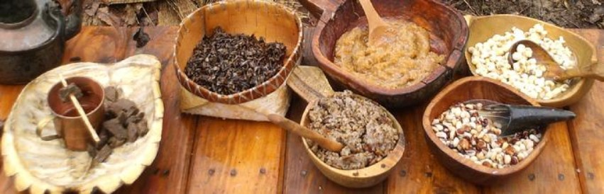 A variety of traditional Ojibwa foods that were flavored with maple sugar
